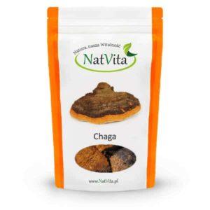 Chaga - kawałki guza brzozy